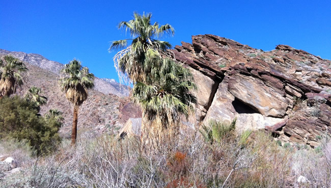 Image of rock formations with distant snow caps in the Andreas Canyon walk on the Agua Caliente Indian Reservation