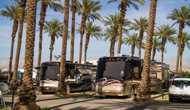 Image of big rigs parked in the Palm Springs RV park.