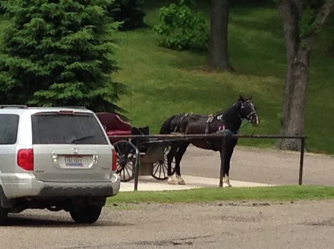horse-buggy-in-car-parking-lot-amish-country