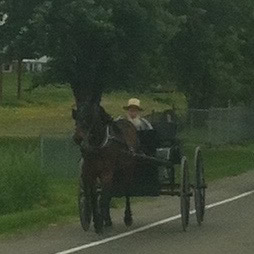 horse-buggy-on-highway-amish-country
