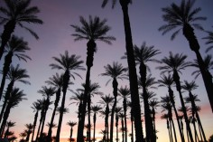 Palm Springs RV Parks